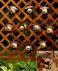 RIVER'S EDGE LODGE LANTERN STRING LIGHT OUTDOOR COUNTRY HUNTING LOG CABIN DECOR