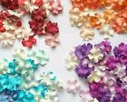 100 pcs. Mini Petal Artificial Mulberry Paper Scrapbooking Card Crafts DIY 2cm