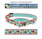 """Lupine Lifetime COMBINATION or Martingale Dog Collar 3/4"""" LIMITED - ORCHARD"""