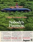 """JAGUAR E-TYPE 1974 Nobody's Pussycat SEXY = POSTER CHOOSE FROM 7 SIZES 19"""" - 36"""""""
