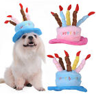 Pets Dogs Cute Birthday Hat with Cake & Candles Design Party Costume Accessory