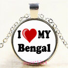 I Love My bengal Cabochon Silver-Bronze-Black-Gold Glass Chain Necklace #5342