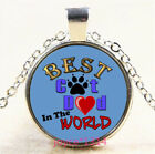 Best Cat Dad Cabochon Silver-Bronze-Black-Gold Glass Chain Pendant Necklace#5343