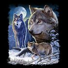 Wolf Winter Size Youth Medium to 6 X Large T Shirt Pick Your Size image