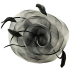Swirl Floral Feathers Fascinators Headband Millinery Cocktail Derby Hat