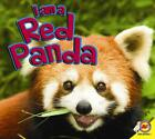 I Am a Red Panda by Alexis Roumanis (English) Library Binding Book Free Shipping