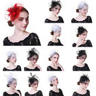 Ladies Wedding Cocktail Party Net Fascinator Hair Clips Feather Headbands Hats