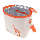 Lunch Box Tote Bag Insulated Fruits Food Drinks Snacks Milk Cooler Container