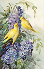 Yellow Canary Birds & Lilacs Quilt Block Multi Sizes FrEE ShiPPinG WoRld WiDE