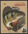 Yellow Perch Large Decal Sticker Right Left Facing Boats Trucks Fishing Fish