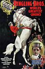 Ringling Brothers 1899 Circus Poster. Giclee Wall Art Reproduction Prints Canvas
