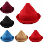 Women Lady Autumn Winter Vintage Basin Cap Pointy Witch Wool Hat Fashion O0477