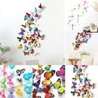 3d Stereo 19-24pcs Decal Wall Stickers Home Decorations Butterfly Dragonfly New