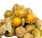 Pineapple Tomatillo Seeds     bin271