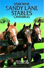 """Usborne Sandy Lane Stables Omnibus: """"Horse for t... by Leigh, Susannah Paperback"""