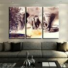 3 Panel Elephant Family Watercolor Modern Decor Canvas Wall Art HD Print