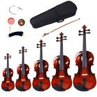 1/4 1/2 1/4 3/4 4/4 1/8 Acoustic Maple Violin Set w/Case Bow Rosin Strings Tuner