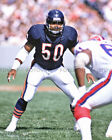 MIKE SINGLETARY Photo Picture CHICAGO BEARS Football Vintage Print 8x10 11x14 S2 on eBay