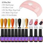 12Pcs/Set PICT YOU 8ml UV Gel Nail Polish Soak Off 36W LED UV Lamp Nail Dryer