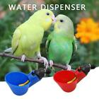 Poultry Water Drinking Cups Plastic Automatic Drinker Bird Chicken Coop Feed UK