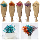Real Dried Flower Baby Breath Gypsophila Flowers Bouquet Wedding Home Decoration