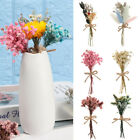 1 Bunch Natural Dried Flower Gypsophila Bouquet Diy Party Floral Art Home Decor❤