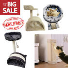 Kitten Cat Tree Cat Scratcher Cat Scratching Post Pet Climbing Activity Centre