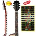 Guitar Fretboard Note Decal Finger Board Musical Scale Map Sticker Learn Trainer