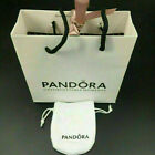 Genuine Silver Pandora Safety Chain Charm ALE S925 With Free Gift Pouch Bag