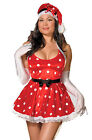 PLUS SIZE Adult Women's 5 Piece HOLIDAY PIN-UP Costume!