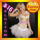 5071 Burlesque Cream Steel Boned Corset Tutu 8 10 12 14