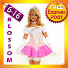 884 Sleeping Beauty Princess Aurora Fancy Dress Costume