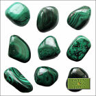 1 x Malachite Green Copper Carbonate Ore Crystal Gem Tumblestone Zaire