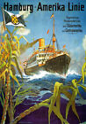 TX149 Vintage Hamburg-America Line Cruise Shipping Travel Poster Re-Print A4