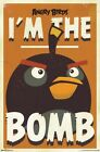 ANGRY BIRDS ~ I'M THE BOMB 22x34 VIDEO GAME POSTER iPHONE APP NEW/ROLLED!