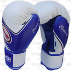 Boxing Gloves Fight Punch Bag Mitt MMA Muay Thai Rex Leather Grappling Pads