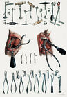 ML21 Vintage 1800's Medical Dentist Tools & Equipment Poster Re-Print A4