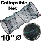NEW Collapsible Lobster Crab Eel Ring Baits Trap Pot Sea Fresh Water Fishing Net