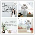 Vogue Assorted Design Art Word Beauty Wall Sticker Paper Wall Decal Home Decor-Z