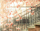 Poster / Leinwandbild Apricot flowers with railings