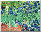 Irises by Vincent van Gogh Wildflowers Stretched Painting Repro Canvas Art Print