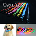 PET BLINKER COLLAR SAFETY LED FLASHING LIGHT - PERFECT FOR DOG CAT AT NIGHT!