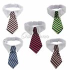 Fashion Striped Bow Tie Collar Neck Tie White Collar 5 Stytles For Pet Dog Cat