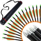 Archery Fletched Arrows Lime Nock Fiberglass Hunting & Target Practice & Quiver