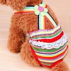 Female Puppy Dog Striped Suspender Braces Sanitary Panty Diaper Stay On XXS-XL