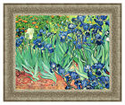 Irises Flowers by Vincent van Gogh Painting Reproduction Framed Canvas Art Print