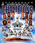 New England Patriots Super Bowl XLIX Champions Team Photo RR009 (Select Size)