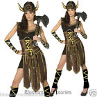 CL350 Striking Vicious Viking Nordic Warrior Fancy Dress Up Womens Adult Costume