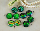 12mm 16mm 20mm cab Handmade glass Photo cabochon butterfly wing green 12B005