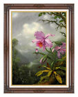 Framed Art Print Hummingbird Perched on the Orchid Plant by Martin J Heade Repro